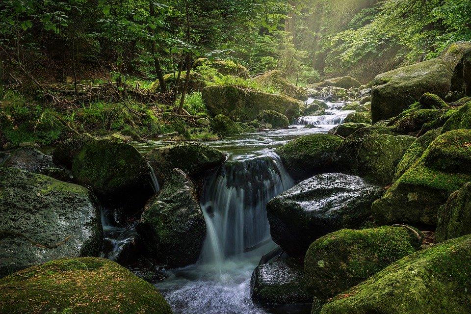 Devon Water fall - best family holiday idea