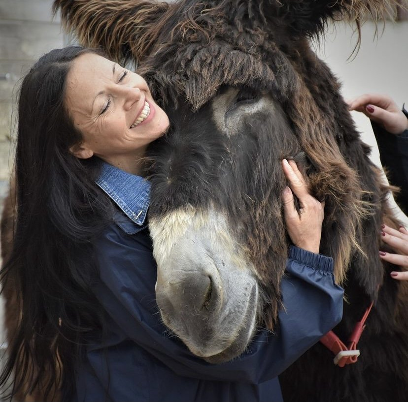 Free day out at The Donkey Sanctuary, Devon.