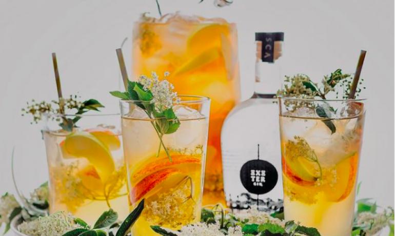 7 of the Best Gin's in Devon